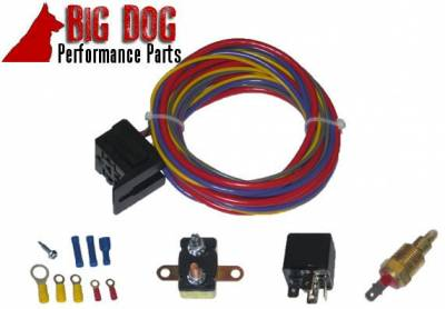 Big Dog Auto - Two Ten-Inch Chrome Finish Radiator Cooling Fans & Electric Relay - Image 5